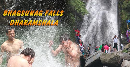 Hotels in Himachal, Best Hotels in Himachal