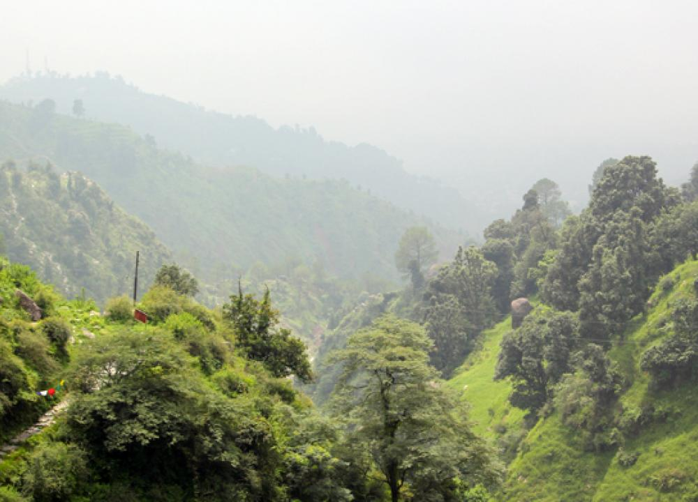 Dharamshala travel guide, Dharamsala tourism, Dharamsala ...