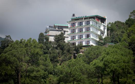 Pong View Dharamshala